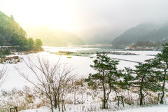 Lake Shoji Japan. view of beautiful white winter. Lake Shoji Japan. view of beautiful white winter Royalty Free Stock Photos