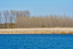 Lake Shore in Autumn Royalty Free Stock Image