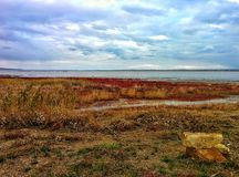 Lake shore. On shore of big salt lake Royalty Free Stock Photography