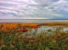 Lake shore. On shore of big salt lake Royalty Free Stock Photo