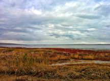 Lake shore. On shore of big salt lake Royalty Free Stock Images