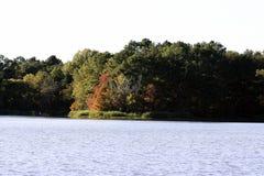 Lake Shore at Fall Stock Images