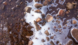 Lake shore foam and rocks Stock Photography