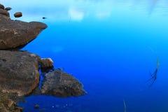 Lake shore fragment Stock Image