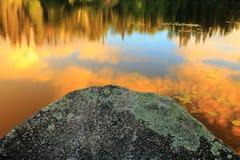 Lake shore fragment Royalty Free Stock Photo