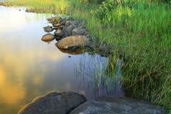 Lake shore fragment Royalty Free Stock Images