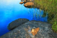 Lake shore fragment Stock Photography