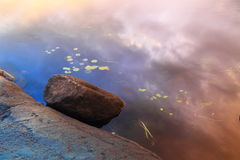 Lake shore fragment Royalty Free Stock Photography