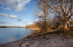 Lake shore in glowing evening light Royalty Free Stock Photography