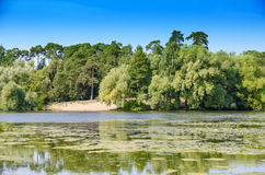 The lake shore. Shore of the lake in the Park Royalty Free Stock Image