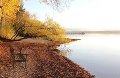 Lake shore starnberg lake with bench Stock Image