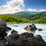 Lake shore with stones near forest on mountain Royalty Free Stock Photo
