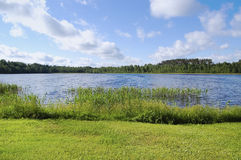 Lake shore. In summer day Royalty Free Stock Photography