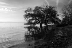 A lake shore Royalty Free Stock Photos