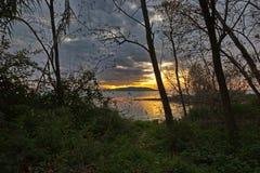 Lake shore and vegetation at sunset Royalty Free Stock Photos