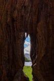 Lake shore view through a hollow tree trunk, Keswick, UK. Lake shore view through a hollow tree trunk in Keswick, Lake District, UK Royalty Free Stock Image