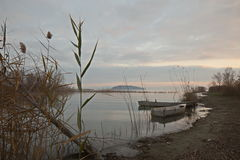 Lake shore. View of a lake shore, with a thin plant in the foreground and some little fishing boats, with warm and soft sunset colors stock images