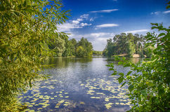 The lake shore. With views of the bridge royalty free stock photography