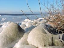 Lake shore in winter Royalty Free Stock Photo