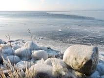 Lake shore in winter Royalty Free Stock Photos