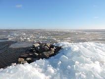Lake shore in winter Royalty Free Stock Image