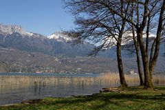 Lake shoreline. Annecy lake shoreline and The range of Alps lointains Stock Image