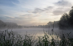Lake shrouded in morning haze Royalty Free Stock Photos