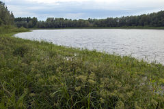Lake in Siberia Stock Photo
