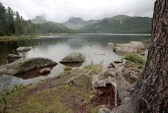Lake in the Siberian taiga. This forest lake has the name `bear` and it is located in the natural Park `Ergaki` in the midst of the mountain range of the Western Stock Images
