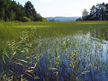 lake siljan sweden Arkivbild