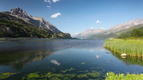 Lake Sils. It is a lake in the Upper Engadine valley, Grisons, Switzerland