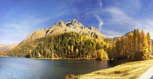 Lake Silvaplan Silvaplanersee royalty free stock photography