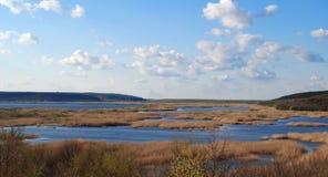 Lake Silver panorama Stock Image