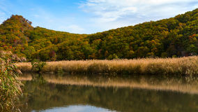Lake sister. Quiet lake in the mellow autumn royalty free stock photography