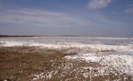 Lake Sivash. Royalty Free Stock Image