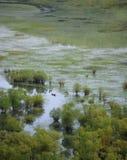 Lake Skadar Stock Photo