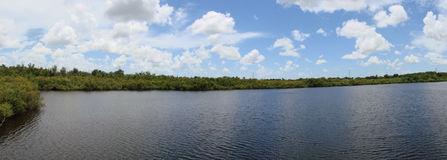 Lake and sky. This is a panoramic of sawgrass lake and the sky and clouds royalty free stock photos