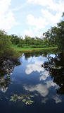 Lake and sky. This is a panoramic of sawgrass lake and the sky and clouds Royalty Free Stock Photography