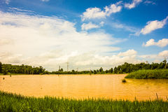 Lake and sky. The beautiful orange lake with the blue sky Royalty Free Stock Photography
