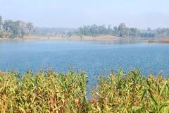 Lake and sky. River or lake and sky Stock Image