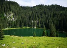 Beautiful view on alpine lake in slovenia royalty free stock images
