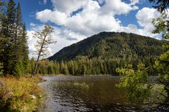 Lake Small Yazevoe, Altai, Kazakhstan Royalty Free Stock Photography