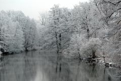 Lake with snow covered trees royalty free stock image