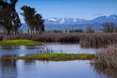 Lake and Snowy Mountains Royalty Free Stock Photos