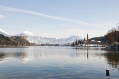 Lake som blödas med slottet bakom, blött, Slovenien Arkivbilder