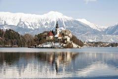 Lake som blödas med slottet bakom, blött, Slovenien Royaltyfri Foto