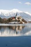 Lake som blödas med slottet bakom, blött, Slovenien Royaltyfria Foton