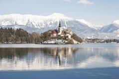 Lake som blödas med slottet bakom, blött, Slovenien Royaltyfria Bilder