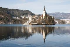Lake som blödas med slottet bakom, blött, Slovenien Arkivbild