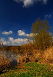 Lake in spring. Blue sky and clouds Royalty Free Stock Photos
